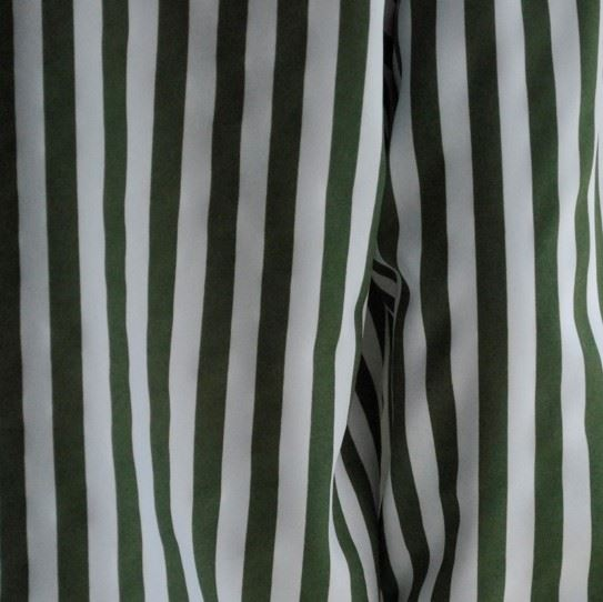 Зелена полоса